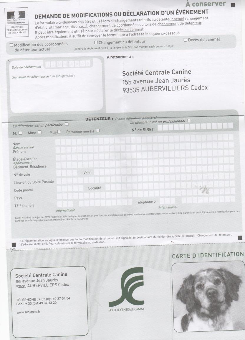 carte de puce electronique.2 eme  version  pile