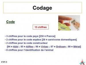 codes2