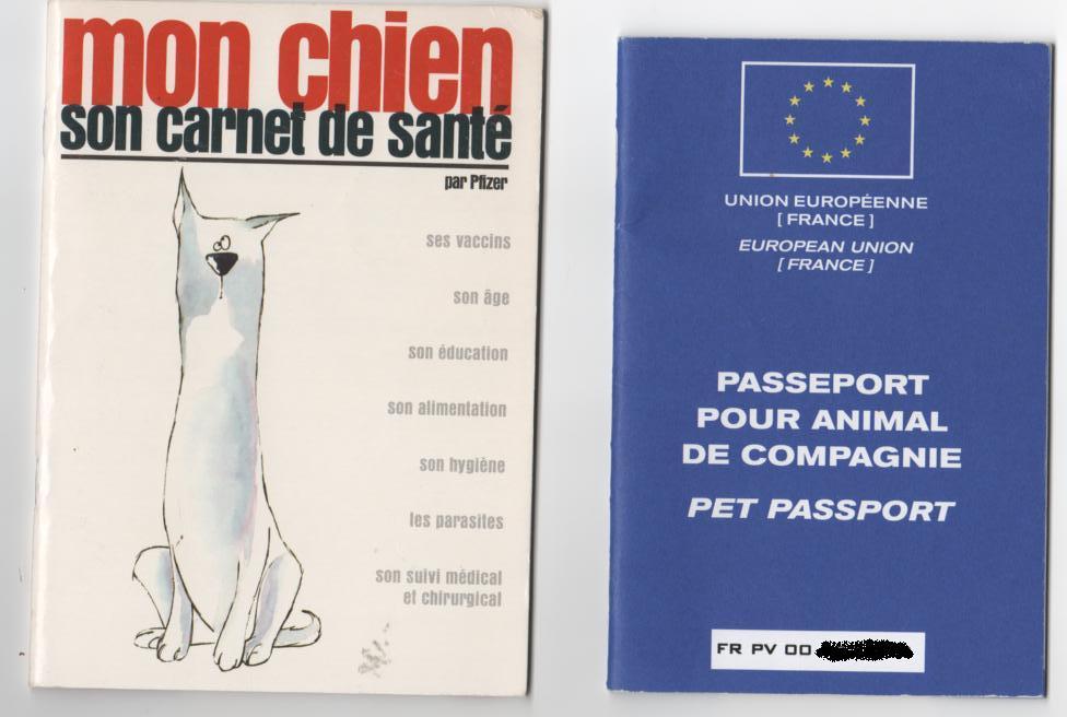 passeport carnet sante
