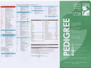pedigree site