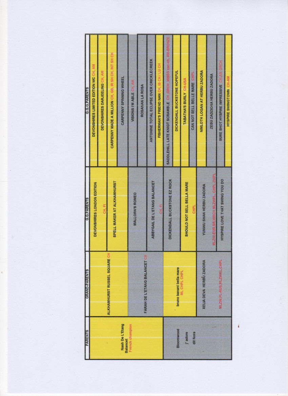Numérisation_20210212